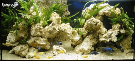 decorations for cichlid fish aquariums aquaroche