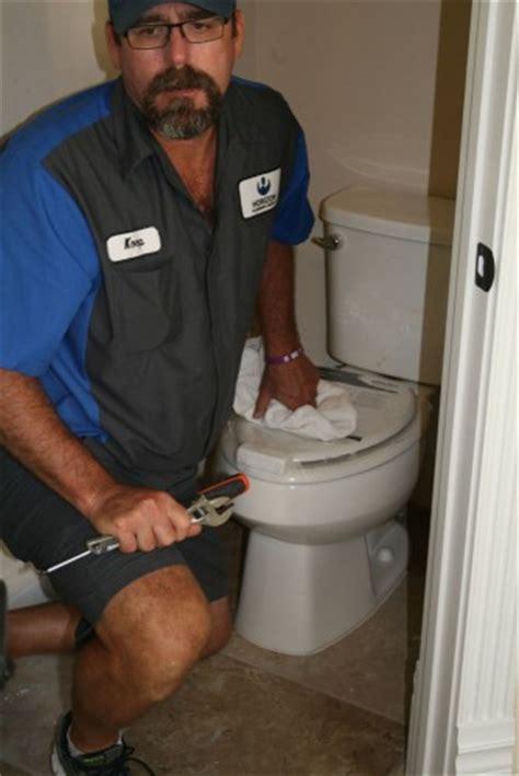 toilets drains