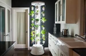 Pflanzen Zu Hause : hydroponic f r zuhause ein toller indoor garten f r alle selbstversorger ~ Markanthonyermac.com Haus und Dekorationen