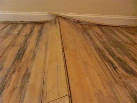 hardwood floors after water damage carpet cleaning