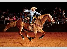 Youth Saddle Up at the Texas Rodeo Farm Flavor