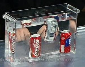 Float or Sink - Cool Science Experiment. Scientists seem ...
