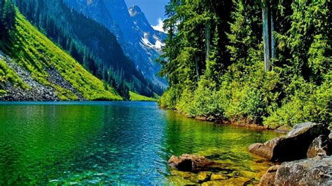 35+ Nature Wallpapers Hd ·① Download Free High Resolution. Sales Manager Performance Review Ssllf. Sample Letter Of Recommendation For Graduate Template. Why You Want To Become A Teacher Template. Official Leave Application Format Pics. Technology Powerpoint Templates. The Mysteries Of Harris Burdick Pdf Template. Sample Student Resume High School Template. Options Trading Journal Spreadsheet Download