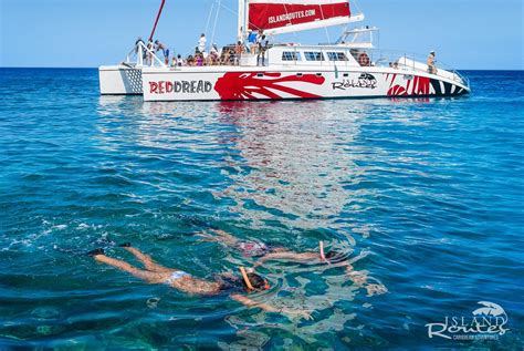 Catamaran Tour Jamaica Negril by Sightseeing Tours In Jamaica And Negril Excursions