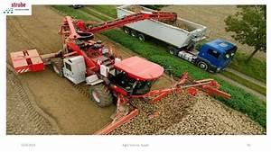 Sugar beet cultivation under center pivot irrigation system.