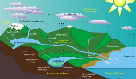 131 The Hydrological Cycle  Physical Geology