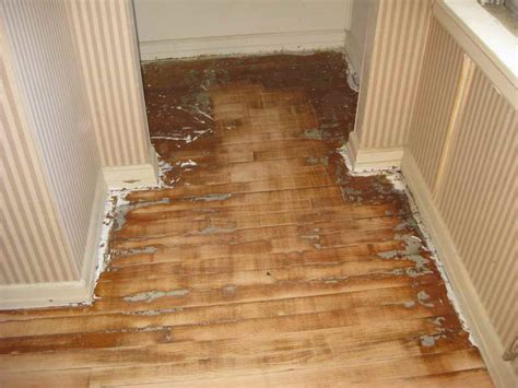 how to refinish hardwood floor without sanding fortikur