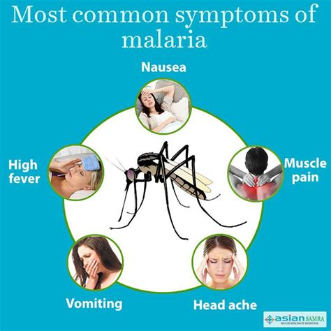 Malaria Disease Symptoms  Wwwpixsharkm  Images. Accommodation Signs. Constuction Signs Of Stroke. Cotton Candy Signs. Upside Down Triangle Signs. British Signs. Pol Signs. Battery Warning Signs. Biofilm Signs