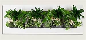 Pflanzen An Der Wand : flowerwall echtes lebendes pflanzenbild ~ Markanthonyermac.com Haus und Dekorationen