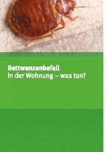 Staubige Wohnung Was Tun : bettwanzenbefall in der wohnung was tun umweltbundesamt ~ Markanthonyermac.com Haus und Dekorationen