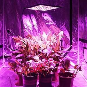 Pflanzen Led Licht : led 45 watt led pflanzenlampe pflanzen wachstumslampe 225 leds rot bla ~ Markanthonyermac.com Haus und Dekorationen