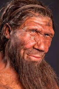 neanderthal dna gave humans allergies immunity boost anthropology genetics sci news