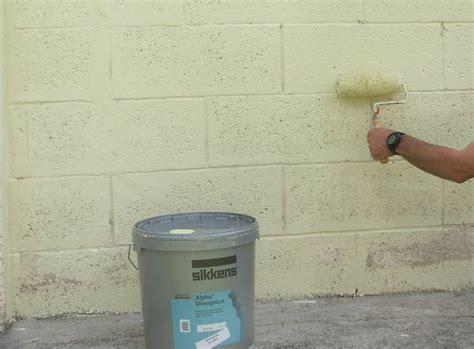 peindre un mur ext 233 rieur en 11 233 galerie photos d article 12 14