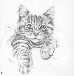 Épinglé par Marilyn Church sur Art | Pinterest | Chats ...