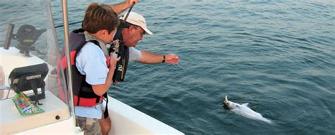 Alabama Fine For No Boating License by Alabama Fishing And Boating Resources