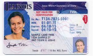 Undocumented In Illinois Can Apply For Driver's License ...