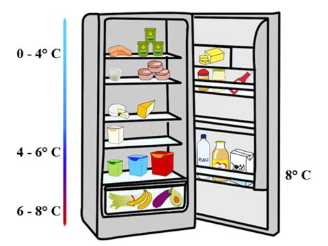 comment ranger frigo