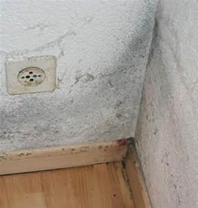 Feuchte Decke Was Tun : schimmel an der decke was tun haus renovieren ~ Markanthonyermac.com Haus und Dekorationen