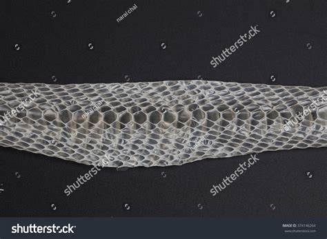 rattlesnake skin snake shedding skin stock photo 374146264