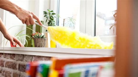 How To Keep The House Clean When You Have Ms