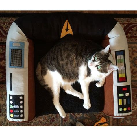 84 best images about cats wif trek or trek cats