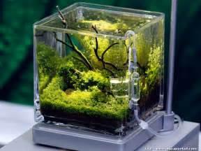 d 233 coration pour aquarium d eau douce encombrement place