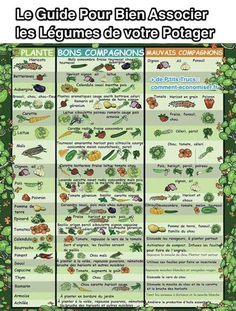 Le Guide Pratique Pour Bien Associer Les Légumes De Votre