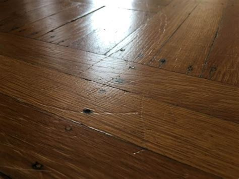 Scratches From My Big Dog On Hardwood Floor, What Should I Last Minute Gifts For Mom Christmas Great Cheap Diy Ideas Gift 12 Year Old Daughter Girlfriend Easy Candy To Give Your