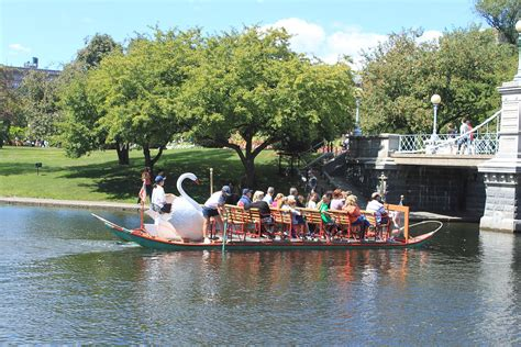 Swan Boats Boston Public Garden by Swan Boats Boston Massachusetts Wikipedia
