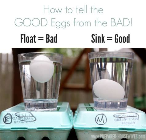 prevent unnecessary waste with these awesome kitchen hacks