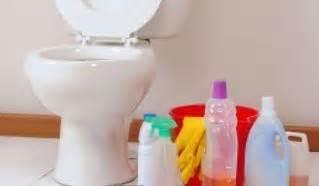 comment nettoyer un wc entartr 233 distriartisan
