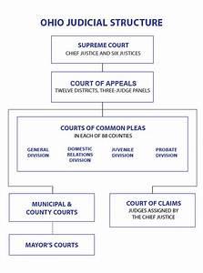 Ohio's Court System | Judicial Votes Count