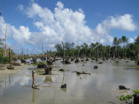 386 the climate change refugees from vanuatu still threat institut de recherche