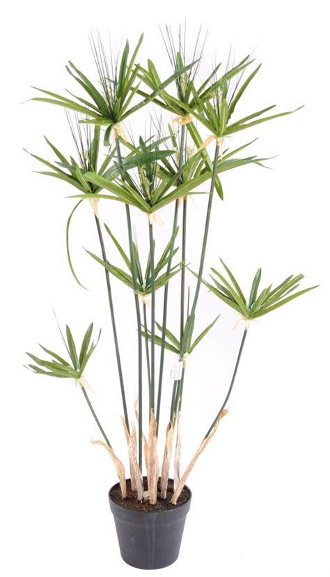 plante artificielle papyrus alternifolius en pot int 233 rieur h 100 cm vert