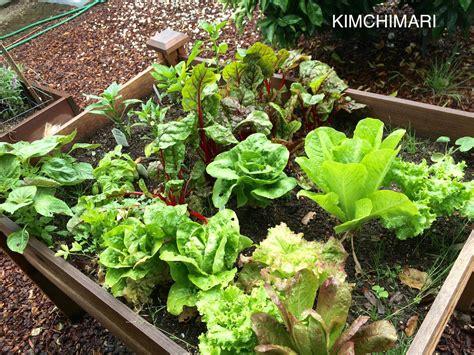Garden Types : Types Of Greens For Korean Lettuce Wraps (ssam)