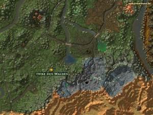 Das Herz Des Waldes : herz des waldes quest gegenstand map guide freier bund world of warcraft ~ Markanthonyermac.com Haus und Dekorationen