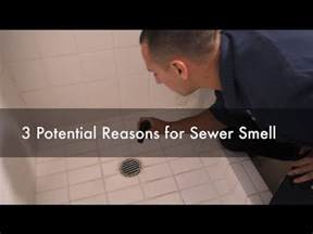 bathroom my bathroom smells like sewer innovative on bathroom inside why do i a sewer smell