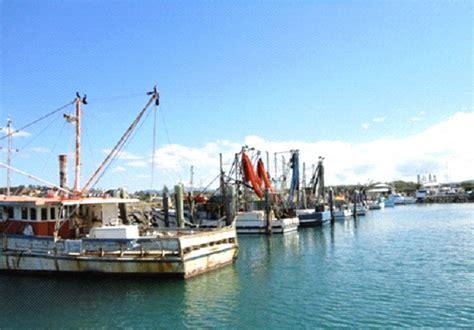 Dragon Boat Racing Coffs Harbour by Www Kanaloa55 Newcastle To Coffs Harbour