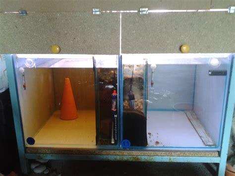 aqua87 fr afficher le sujet batterie aquarium