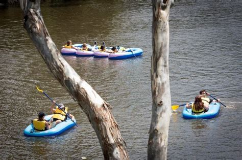 Inflatable Boat Yarra River by Armada Of Inflatables On The Yarra