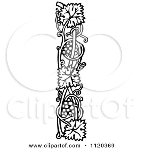 Wall Flowers Decor by Retro Vintage Black And White Grape Vine Border 3 Posters