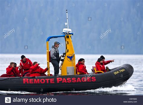 Zodiac Boat Whale Watching Vancouver by Motorised Zodiac Full Of Tourists Whale Watching Near