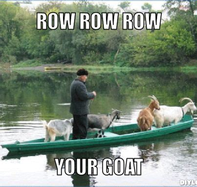 Toy Boat Meme by Row Row Row Your Goat Funny Like Ha Ha Pinterest