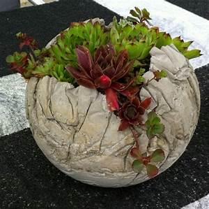 Pflanzen Kübel Beton : betonplausch betonkugeln mit hauswurz ~ Markanthonyermac.com Haus und Dekorationen