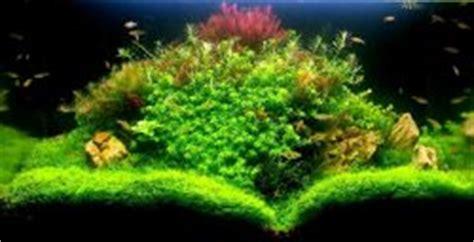 lumirium eclairage led pour aquarium d eau douce