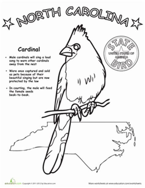 North Carolina State Bird  Worksheet Educationcom