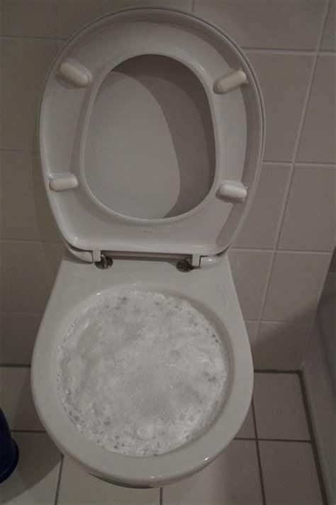 comment d 233 boucher un wc comment entretenir ses toilettes