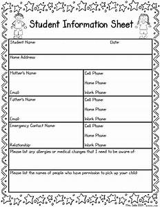 Best 25+ Student Information Sheets ideas on Pinterest ...