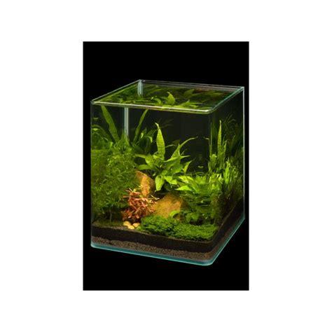 dennerle nano cube 60l basic complete aquarium set pro shrimp uk