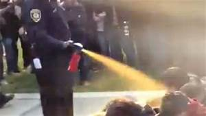 Anonymous goes after UC Davis pepper-spray cop — RT America
